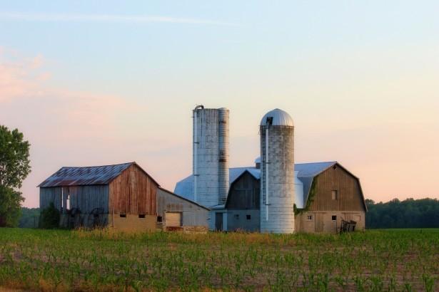 Driva jordbruk
